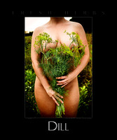 dill 11.139.0095